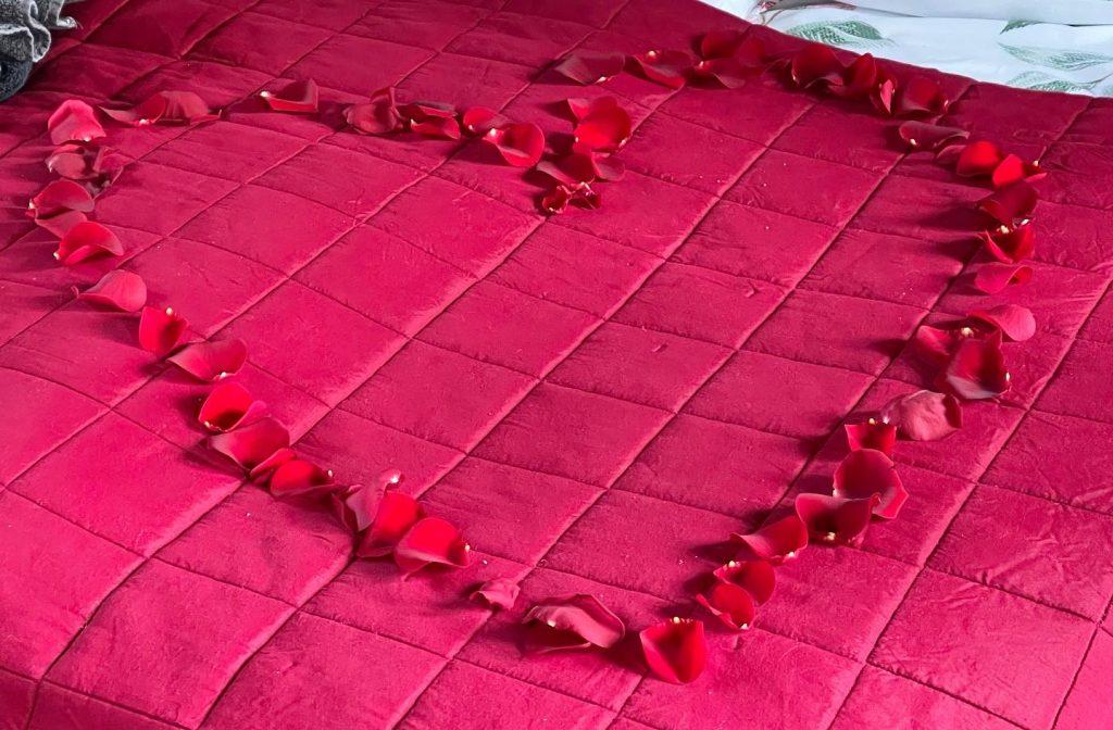 b en b eerbeek rozen blaadjes op bed
